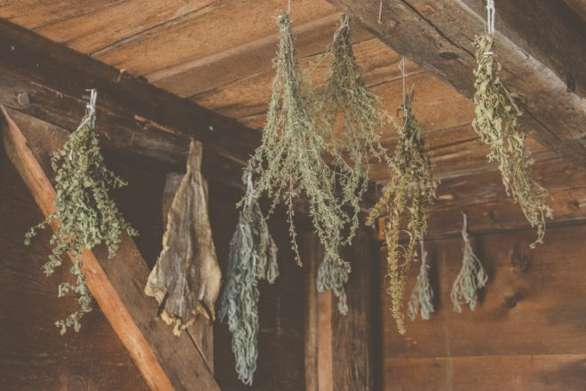 drying herbs is one of the methods of food preservation in ancient time