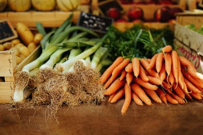 how to dry vegetables beginners guide