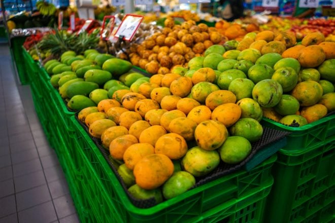 Cultivated mangoes